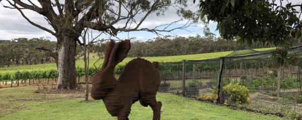 Australian Wines – Far From Ordinary