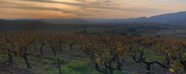 Quick Facts: Languedoc-Roussillon
