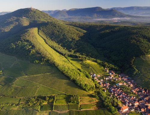 Alsace Rocks
