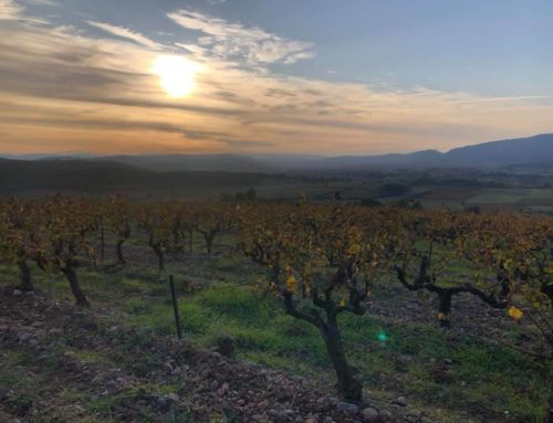 Quick Facts: Languedoc-Roussillon